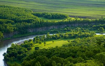 林业部门指挥调度系统解决方案